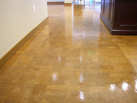 Phoenix Hardwood Floor Re Coating Scottsdale Hardwood